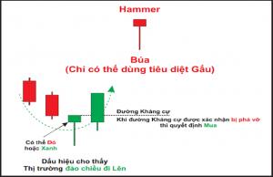 Nến Hammer( nến búa)