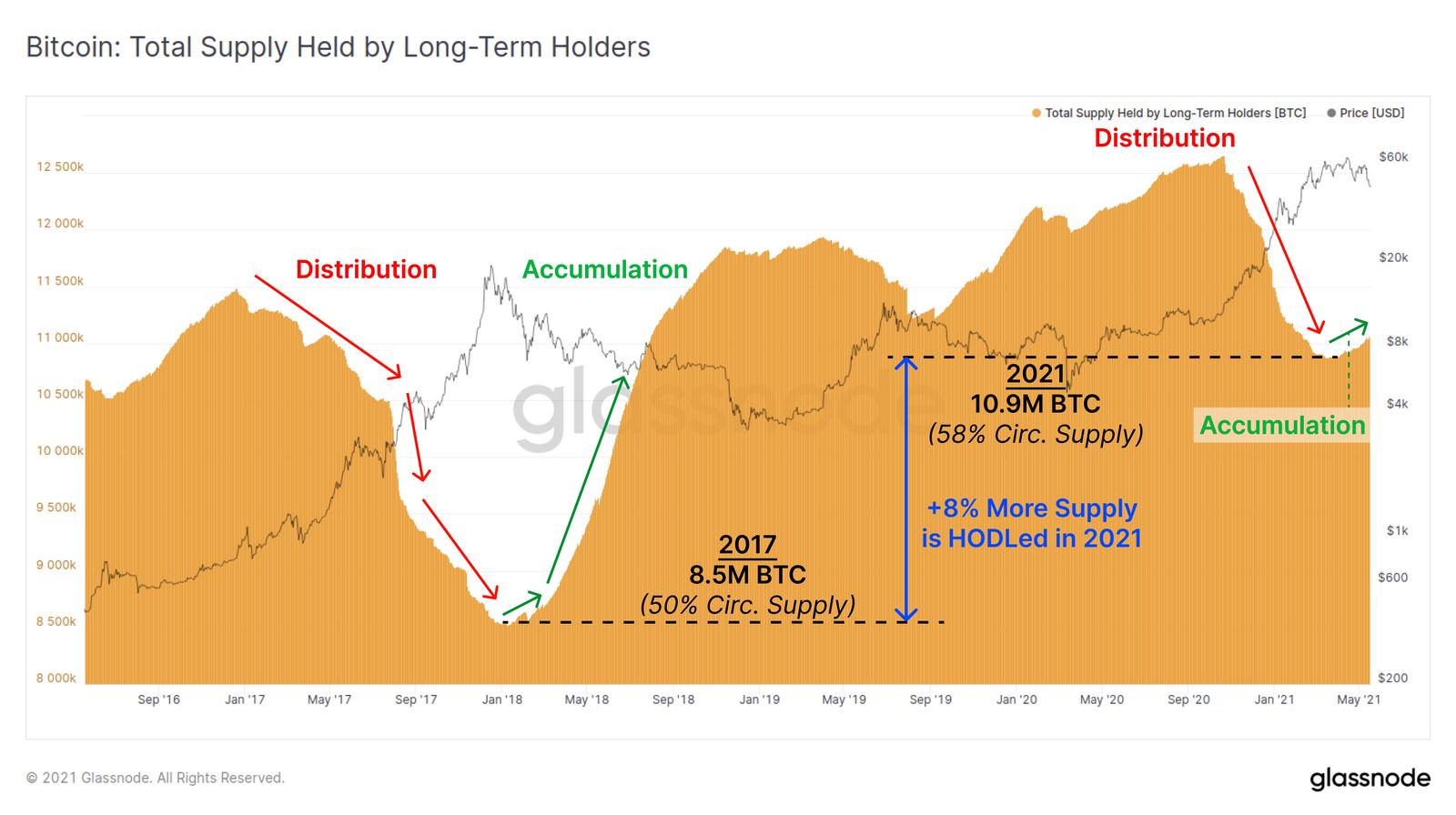 Biểu đồ trực tiếp về nguồn cung Bitcoin của người sở hữu dài hạn