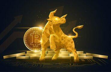 bitcoin tăng giá