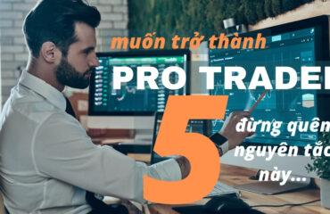 trader forex pro